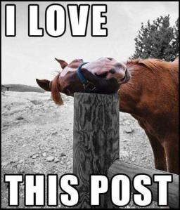Love-this-post-horse
